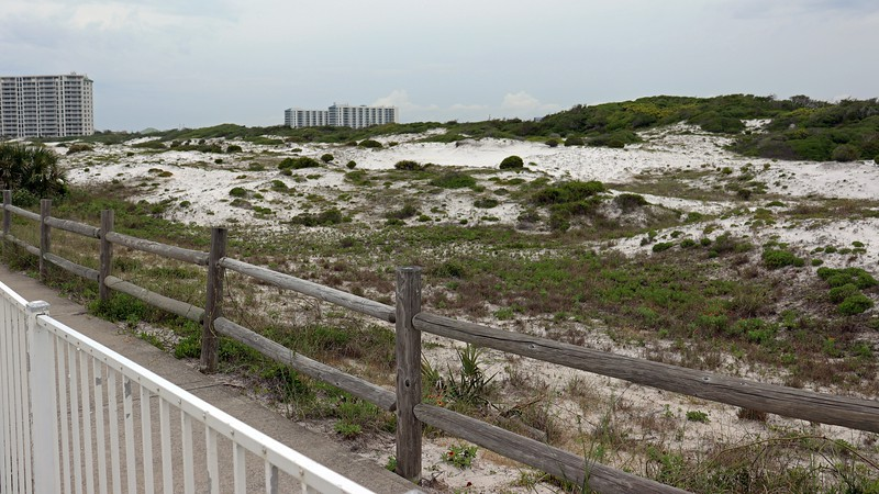 """The Florida State Parks website describes Henderson Beach State Park as, """"a majestic shoreline anchored by 30-foot, snow-white sand dunes.""""  I can confirm !"""