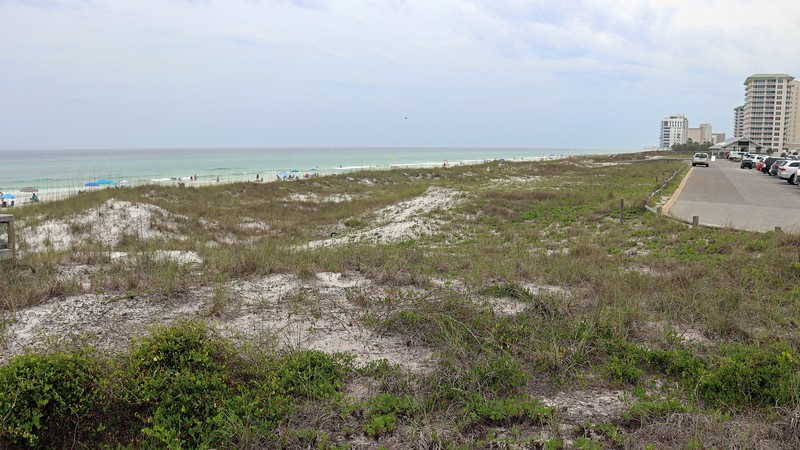 A beautiful view of the Gulf of Mexico beyond the sand dunes.