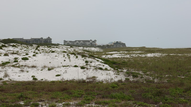 I headed to the other end of the park to see what was there.  The photo above looks east toward more heavy development that Henderson Beach State Park is sandwiched in between.