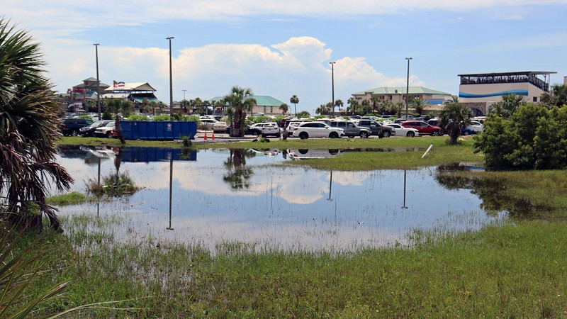 My plan for today was to explore the Okaloosa Island Fishing Pier and headed across the street to the Gulfarium parking lot.  Water drainage seems to be an issue around here.