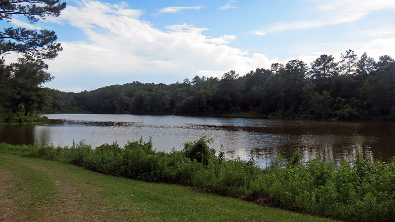 This is a hiking and mountain biking area that features about 5 mile of wooded trails.