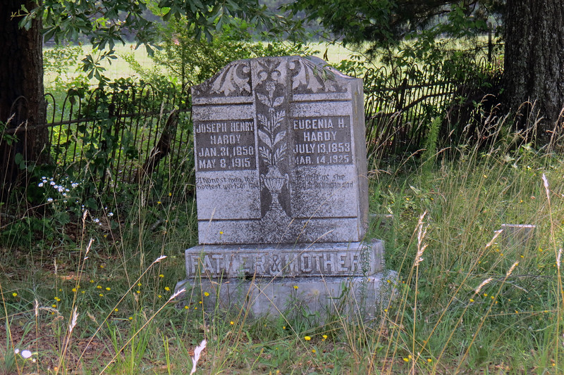 "Aaron's death in 1847 is the earliest date of death recorded for this cemetery, which makes sense if the cemetery is named after him.  Around 90 people are buried in the Bearden Cemetery.  But curiously, Aaron Bearden is only person named ""Bearden"" buried herein."