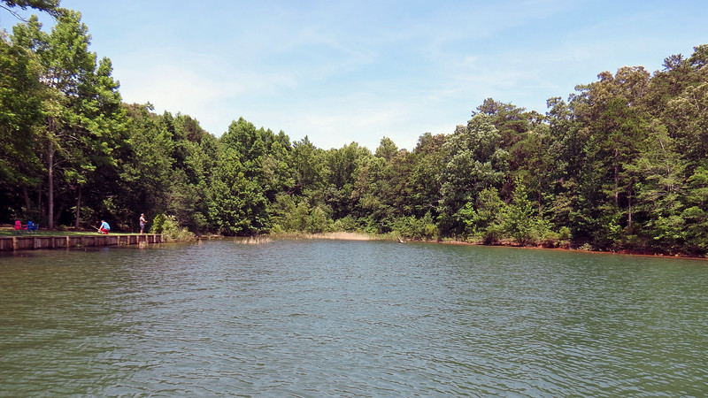 The pier on which I am standing sits in an isolated end of Lake Hartwell and faces southeast.  The photo above actually looks north.  There isn't much to see in this direction.