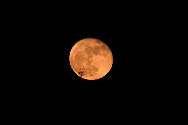 """The term """"Supermoon"""" is applied when a full moon's orbit is closer to the earth than it typically is."""