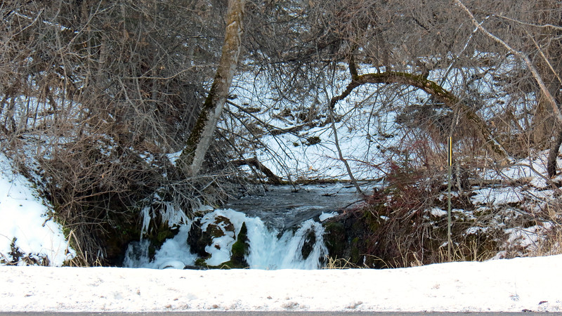 We headed across the roadway to check out Little Spearfish Creek.