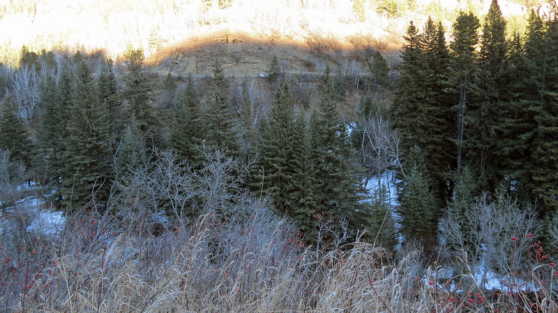 The entrance to the Spearfish Falls Trail sits in this direction.