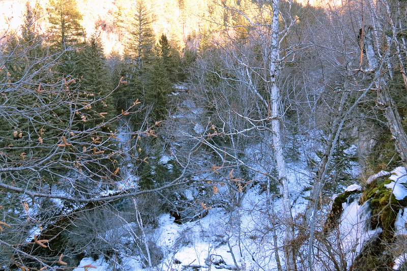 Access to the base of the falls is via the Spearfish Falls Trail.