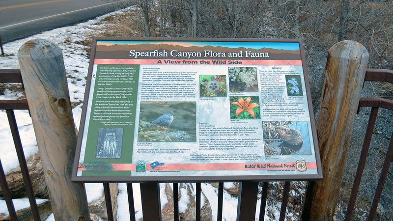 The other display provides information about the wildlife in the area.