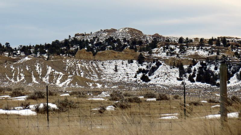 Little Pine Ridge.