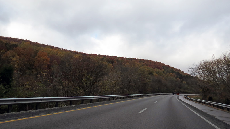 The mild climate of the south meant the beautiful fall colors were still quite prominent.