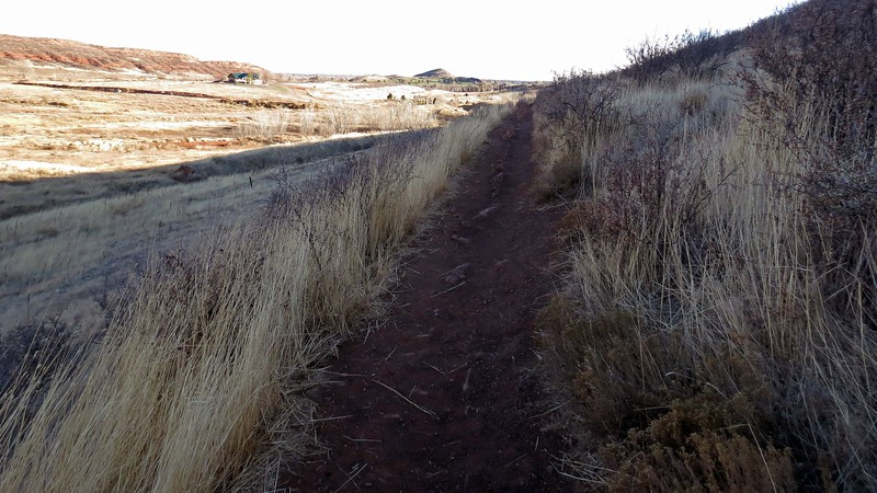 There are 12 miles of trails in the Open Space.  Some are designated for foot traffic, others for horse traffic.