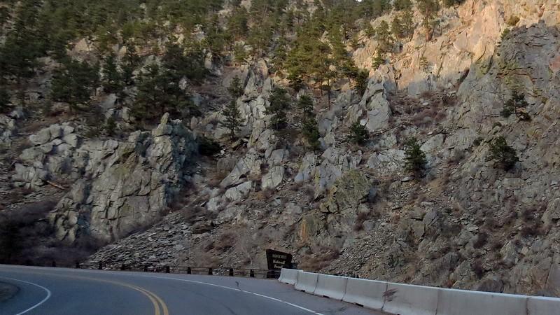 Marker for the Roosevelt National Forest.