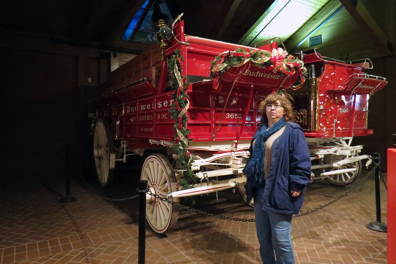 The famous beer wagons were manufactured by Studebaker around 1903, and have been all over the world, and appeared in countless commercials and other media.