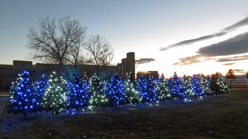 Budweiser's Brewery Lights outdoor display.