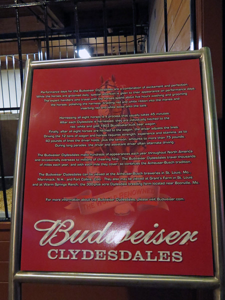 A display sign described some of the details of what happens when the horses are performing.