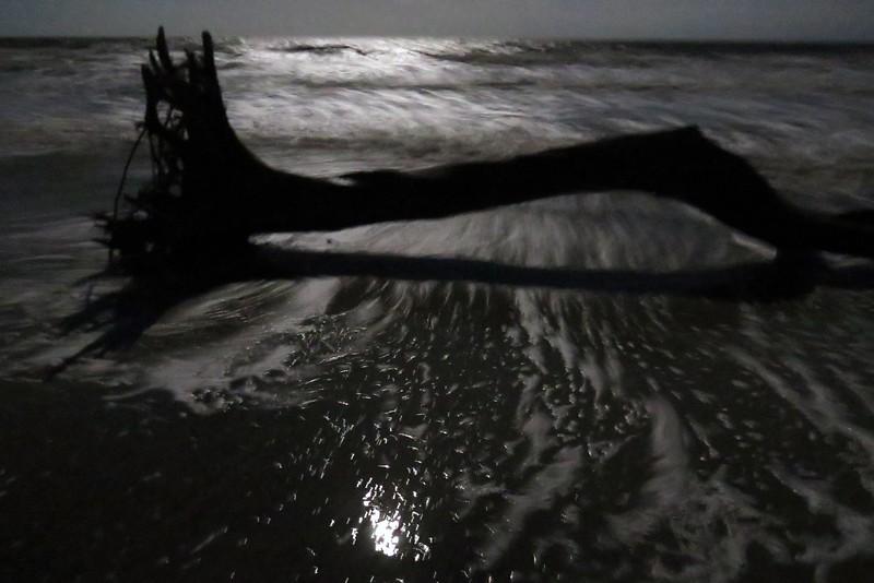 I fail at this night photography thing.