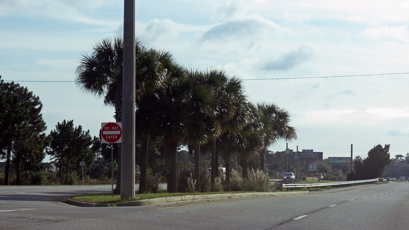 The ride was extremely uneventful, yet incredibly relaxing.  Palm trees began appearing with more frequency as I traveled further south.  They also got much larger.  The photo above was taken along US Route 17 in Brunswick, Georgia.