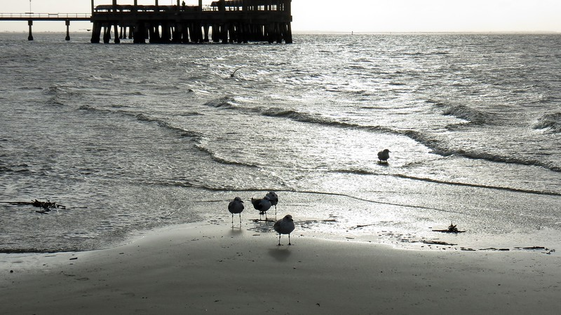 Some of the locals gathered on the beach.