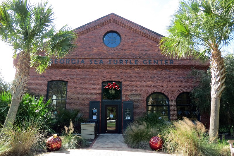 The Georgia Sea Turtle Center opened in 2007 as a sea turtle hospital and rehabilitation facility.  But it is also a research institution and classroom, and the only center of its kind in the state.  The building is the original Jekyll Island Club Powerplant built in 1903.