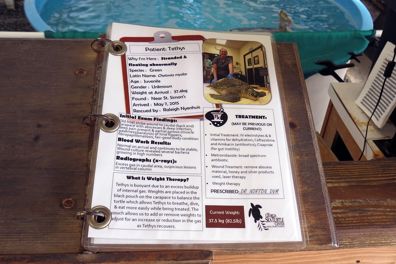 Each occupied tank also had an information sheet attached.