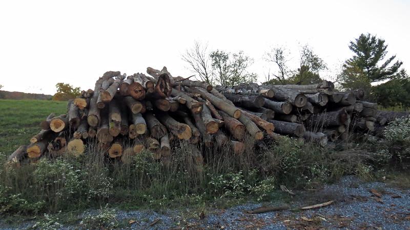Firewood season is fast approaching.