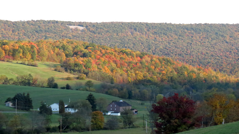 Being here in October means the fall colors were still beautiful.