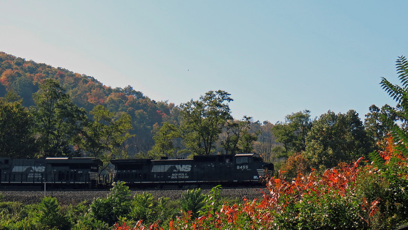 Freight trains make up the majority of the Curve traffic, although Amtrak trains pass through regularly.