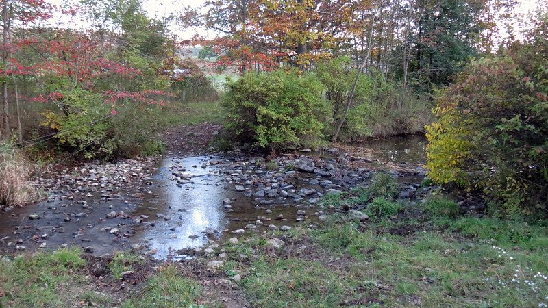A small creek meanders north-south through the property.