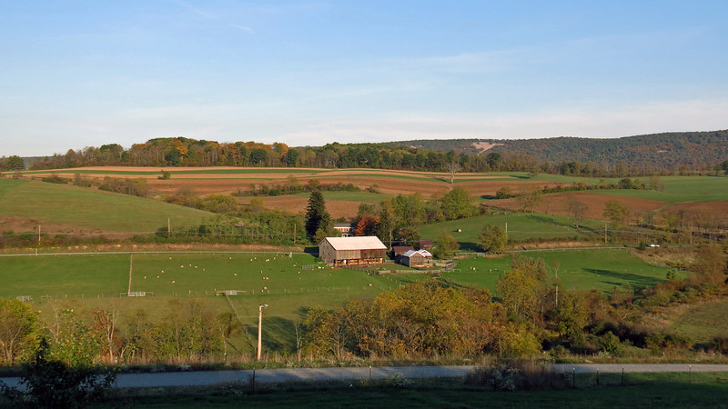 I admit that I suffer from a bit of Property Envy.   I enjoy living in my neighborhood in Georgia.  The lots are bigger and the homes are separated somewhat.  But it just can't compare to being on 55 acres in rural Pennsylvania !