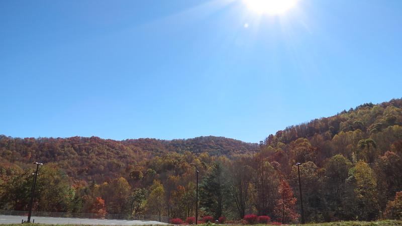 Fall colors outside of Savannah, North Carolina.