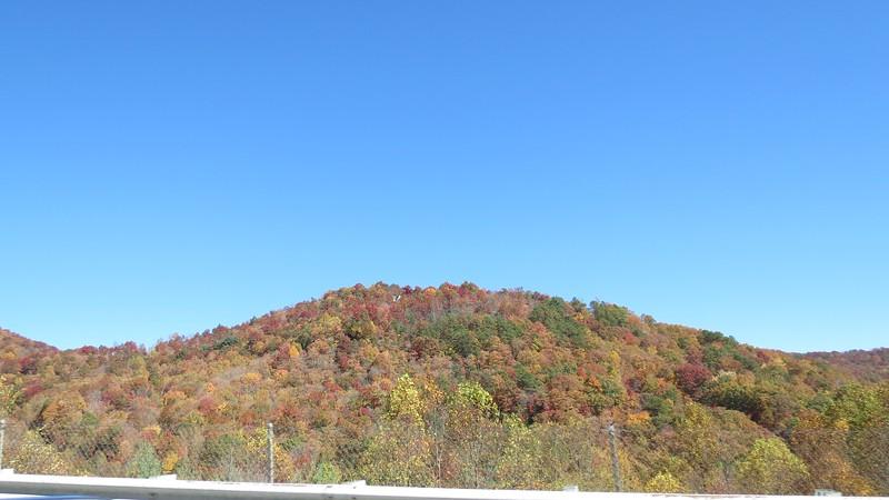 Fall colors outside of Franklin, North Carolina.