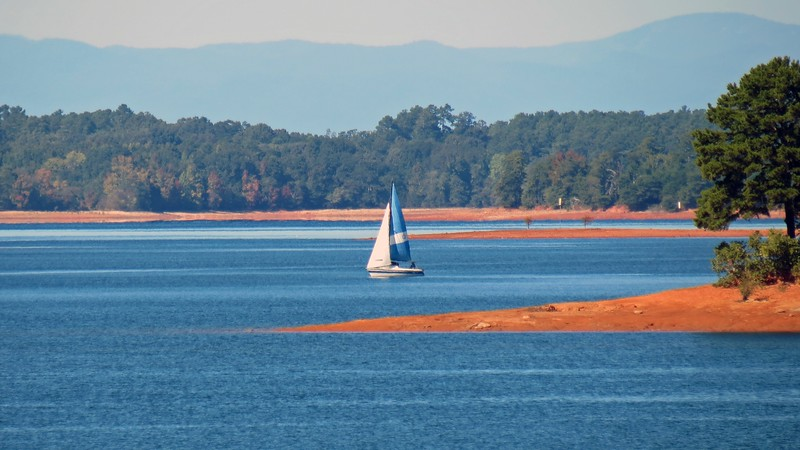 The beautiful weather brought out lots of boaters.