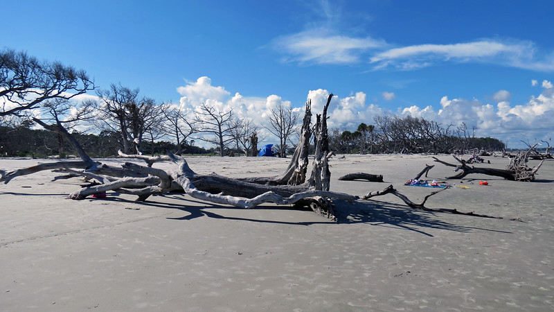 I am told that Hurricane Irma from one year ago did quite a bit of damage to Driftwood Beach.