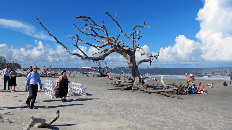 Consistently named as one of the Most Romantic Beaches, Driftwood Beach is a very popular spot for weddings.