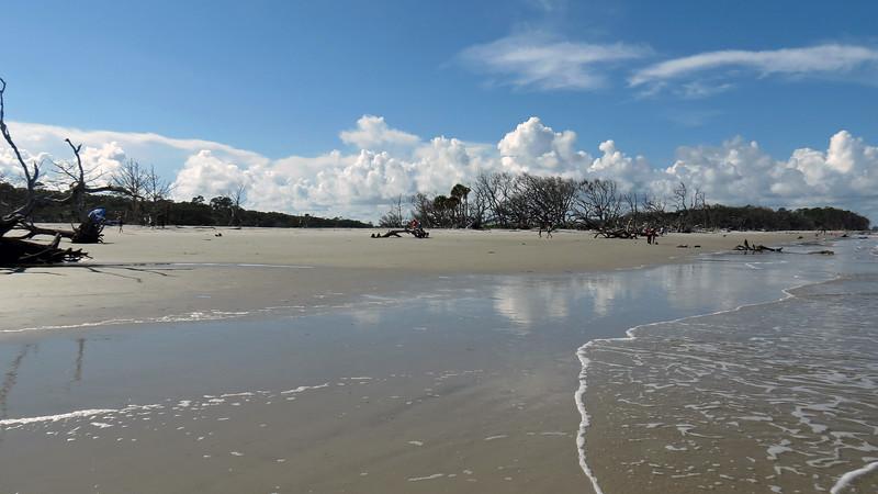 Driftwood Beach.