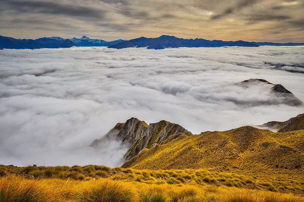 Roy's Peak Trail