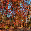 Fall at Salem Lake