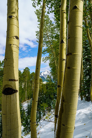 Crested Butte