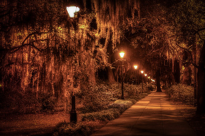 Savannah Alley