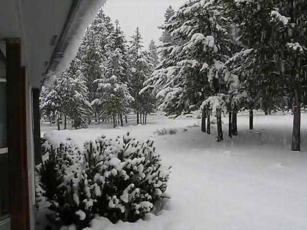 Snow 2014-02-07 MVI_1315