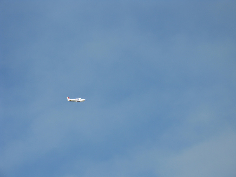 Spotter plane circling overhead.