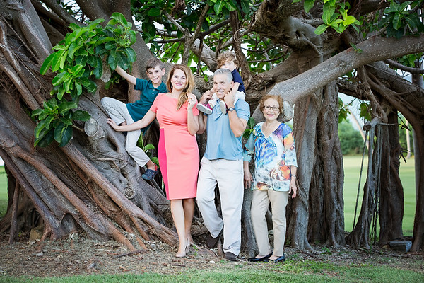 The Psaros-Hermida family
