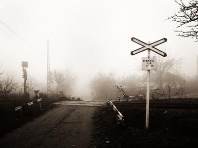 5302. November 2007