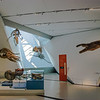 "The <a href=""http://www.rom.on.ca/exhibitions/nhistory/dinosaurs.php"" target=""_blank"">Dinosaur</a> and <a href=""http://www.rom.on.ca/exhibitions/nhistory/mammals.php"" target=""_blank"">Mammal</a> gallery"