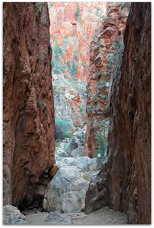 Early Morning Standley Chasm
