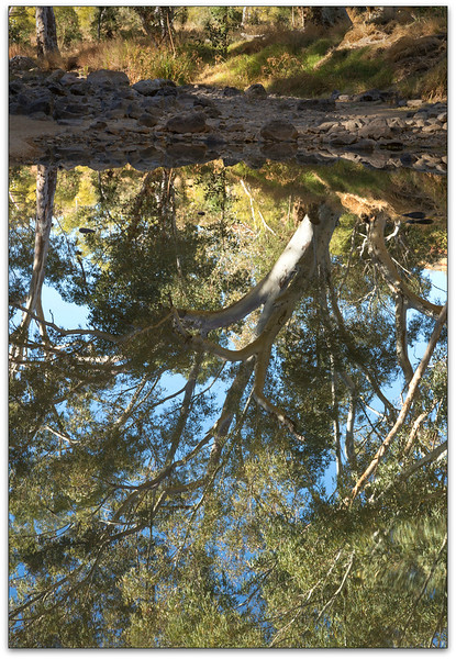 Cool Reflections