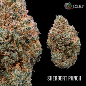 Sherbert Punch