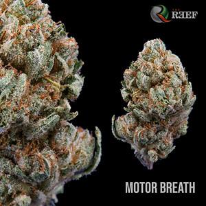 Motor Breath 2