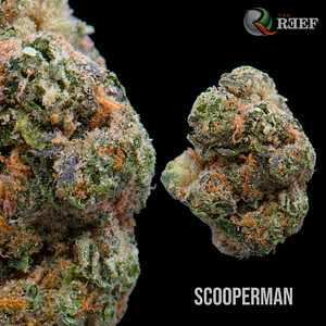 scooperman