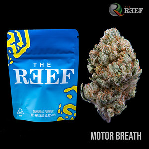 Motor Breath